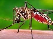 Philippines confirms three new Zika cases