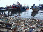Marine ecosystems at risk of further damage