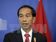 Indonesia calls for global cooperation in combating illegal fishing