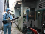 [Video] Two more Zika virus cases reported in HCM City