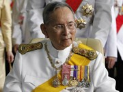 Defence Minister pays floral tribute to Thai King