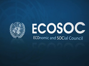 Vietnam's hallmark in UN Economic and Social Council