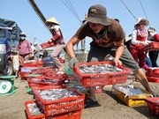 Vietnam's reserves of sea fish close to 4.2 million tonnes