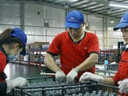 [Video] Vietnam improves ease of business