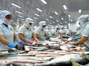 China becomes Vietnam's second biggest tra fish market