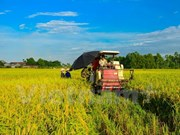 Hi-tech agriculture heats up NA session