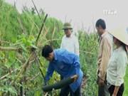[Video] Model of safe vegetables changes remote commune