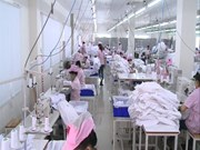 [Video] Vietnam to carry out labour force survey in 2017