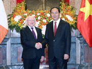 Vietnam, Ireland want to deepen multi-faceted cooperation