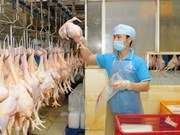 Vietnam to boost chicken exports