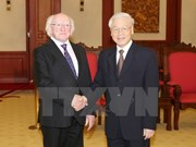Ireland wants to solidify all-around ties with Vietnam