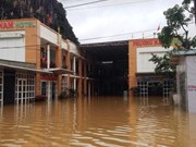 Central provinces of Ha Tinh, Quang Binh see more flooding
