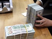 Reference exchange rate goes up 13 VND