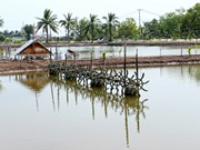 Ca Mau looks at ways to support local fishery