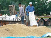 Thailand works to boost rice exports