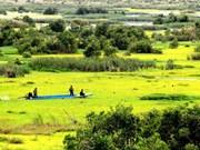 U Minh Thuong National Park preserves biodiversity