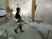 Thailand detects 33 new Zika cases