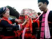 Colours, fragrances of mountainous region to be featured in Hanoi