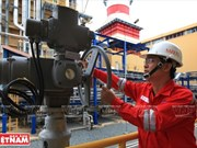 PetroVietnam proposes adding power plants to national grid