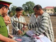 More than 4,000 prisoners get amnesty