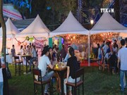 Festival promotes friendship between city residents, expats