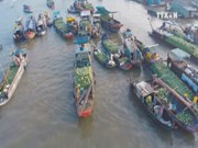 Tourism - important pillar in Vietnam's economy: EIU