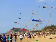 Int'l Kite Festival in Vung Tau