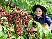 Changes brewing in coffee industry