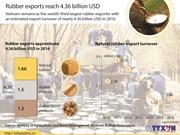 Rubber exports reach 4.36 billion USD