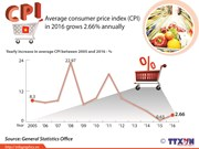 Average CPI grows 2.66% in 2016