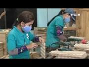 Vietnam to grow over 5 percent a year till 2050