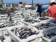 Seafood export value estimated at 844 million USD early 2017