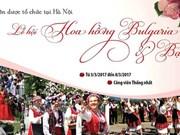 Biggest rose festival opens in Hanoi