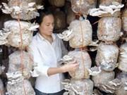 Women help develop household economy