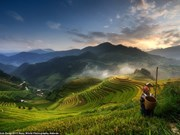 Vietnam photographer wins Sony Awards