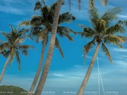 A summer holiday on Sao Beach, Phu Quoc island