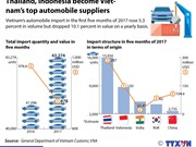 Thailand, Indonesia become Vietnam's top automobile suppliers