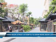 Hanoi Book Street attempts to draw more book lovers