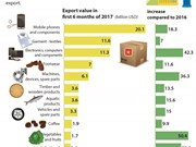Vietnam earns over 73 bln USD from 12 most exported goods