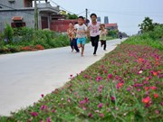 Flowers brighten up countryside street