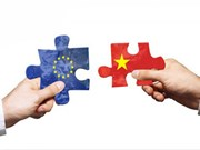 More efforts needed to enforce EU-Vietnam FTA