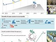 Vietnam: IIP rises 8.7 percent in 10 months