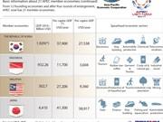 APEC 2017:Basic information about 21 APEC member economies (continued)
