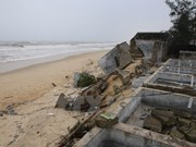 More severe coastal erosion spotted in Thua Thien - Hue
