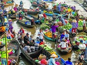 Adjustments to Mekong Delta master plan approved