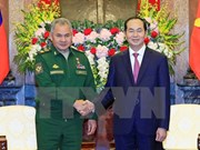 Defence cooperation important to Vietnam-Russia ties: President