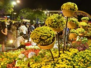 HCM City's flower street ready for Tet