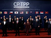 CP TPP expected to boost Vietnam-Chile economic ties