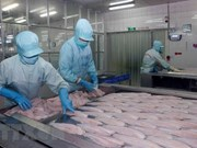 Tra fish export to US increases despite anti-dumping measures