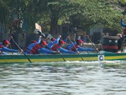 Traditional rowing contest kicks off in Binh Thuan